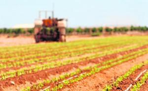Veinte agricultores afrontan multas por saltarse la normativa de abonos