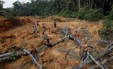 El dolor del Amazonas