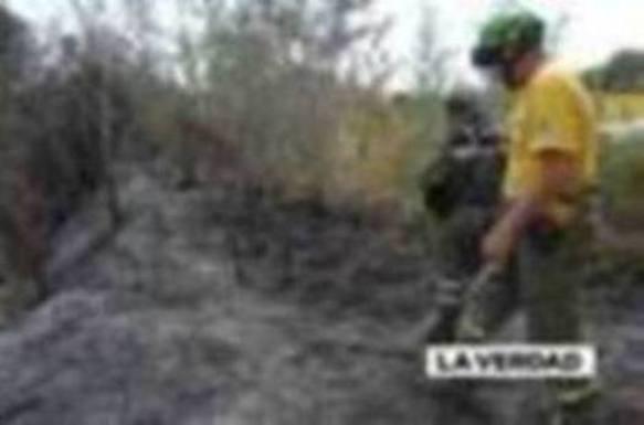 El fuego arrasa cinco hectáreas del paraje El Menjú de Cieza