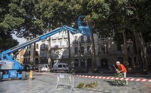 Árboles seguros en Cartagena a las puertas del temporal
