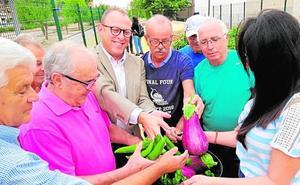El huerto de los mayores de Molina de Segura da sus primeros frutos