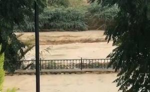 El río Segura se desborda a la altura de Archena