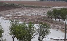 Los cultivos del Campo de Cartagena quedan anegados