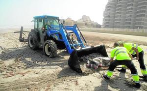 El temporal arroja cientos de atunes muertos a las playas de La Manga