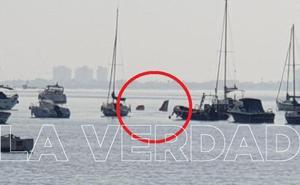 Un instructor y una alumna mueren al estrellarse con una avioneta de la AGA en el Mar Menor