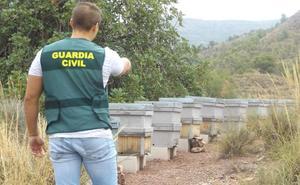 Investigan a cuatro personas por el robo de doce colmenas en Zarcilla de Ramos
