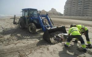 Reabren las playas de La Manga y Cabo de Palos tras retirar los restos de atunes