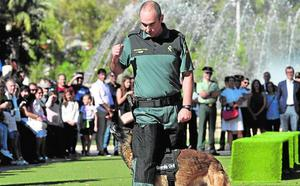 La Guardia Civil muestra su músculo en Murcia