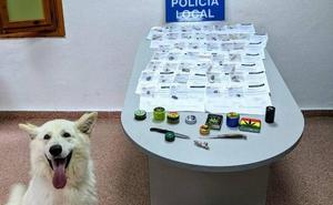 La Policía de Cieza tramita más de 40 actas y denuncias por consumo de drogas en la calle