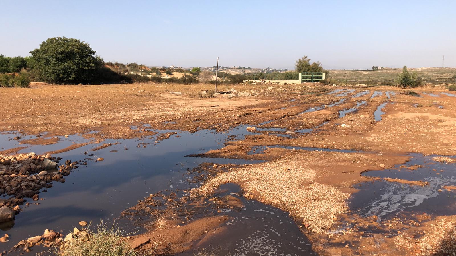 Los ecologistas denuncian el vertido de purines al pantano de Santomera