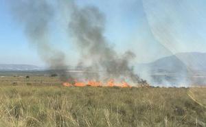 Controlado un incendio forestal en la Sierra de la Cabeza del Asno, en Cieza