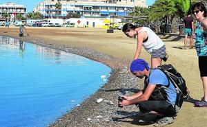 La Fiscalía llegará «hasta el final» para aclarar la muerte de peces en el Mar Menor