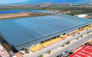 El Mosca ubica su nueva planta logística en el parque industrial de Alhama