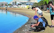 Abren las playas de San Pedro afectadas por la muerte de peces