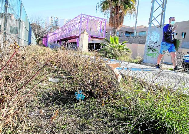 Dry bushes full of papers, plastics, cardboard and excrement remains, in the surroundings of the La Concepción health center.