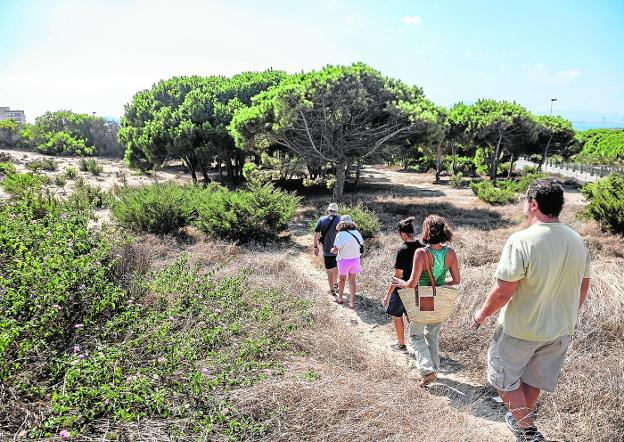 A group of people walk through the dunes of Monte Blanco, last Sunday, during a protest against its urbanization.