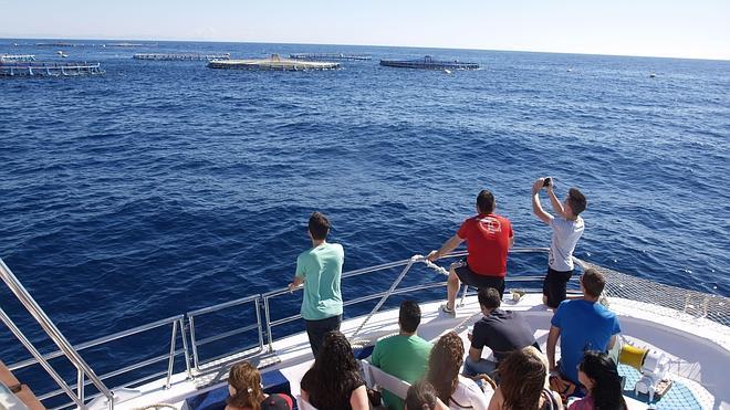 El barco de ávila para conocer gente