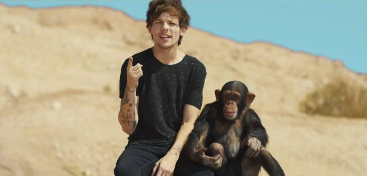 One Direction acusados de maltrato animal